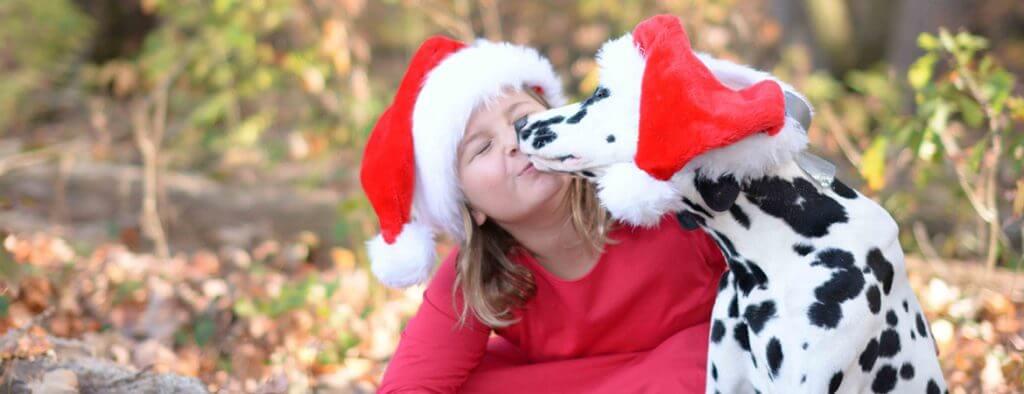 labrador retriever in christmas