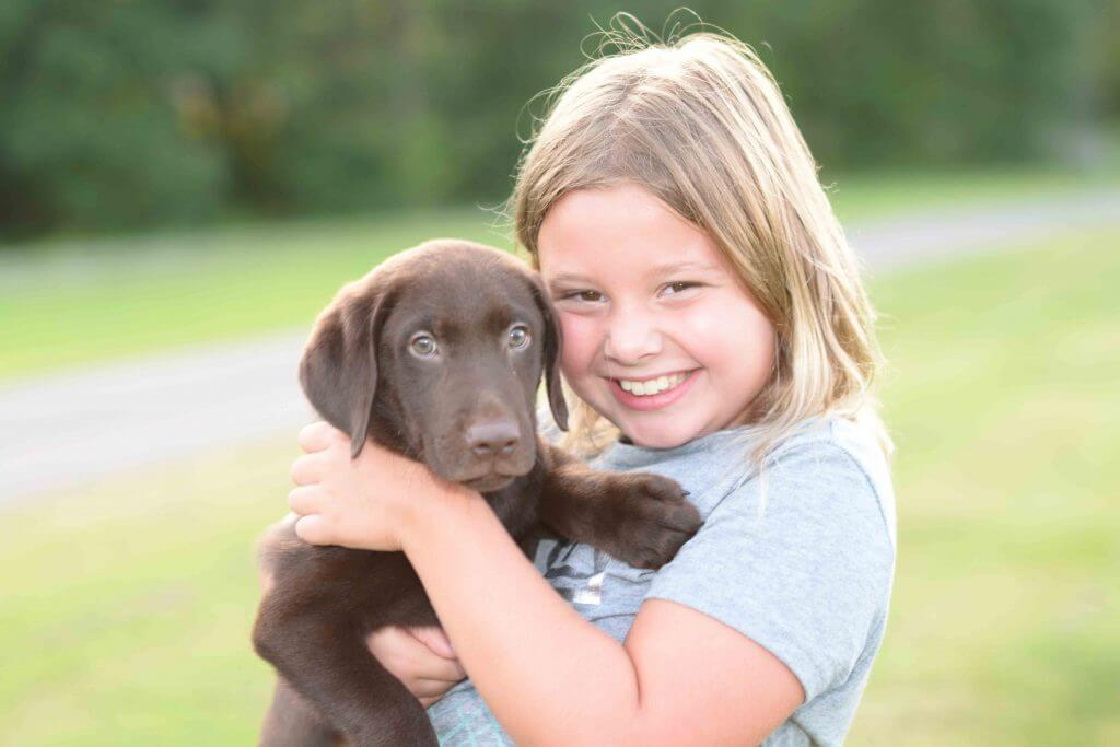 little girl holding labrador puppy